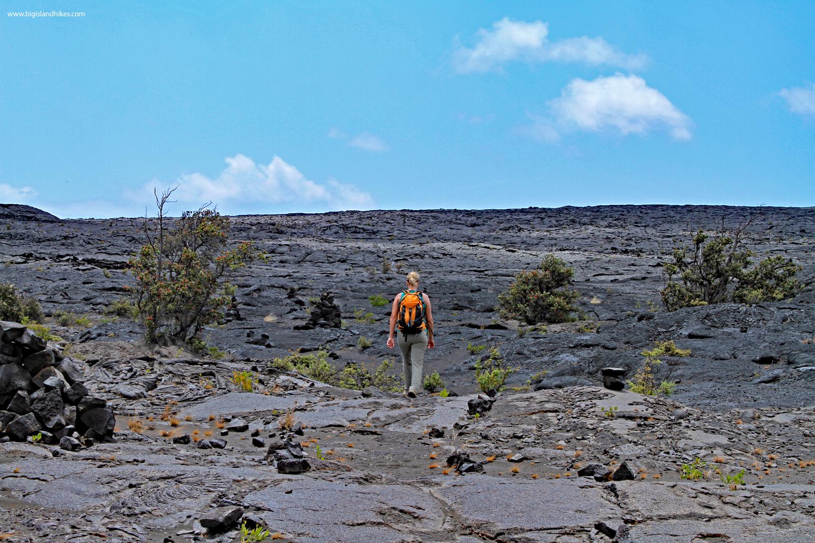 Kaʻū Desert