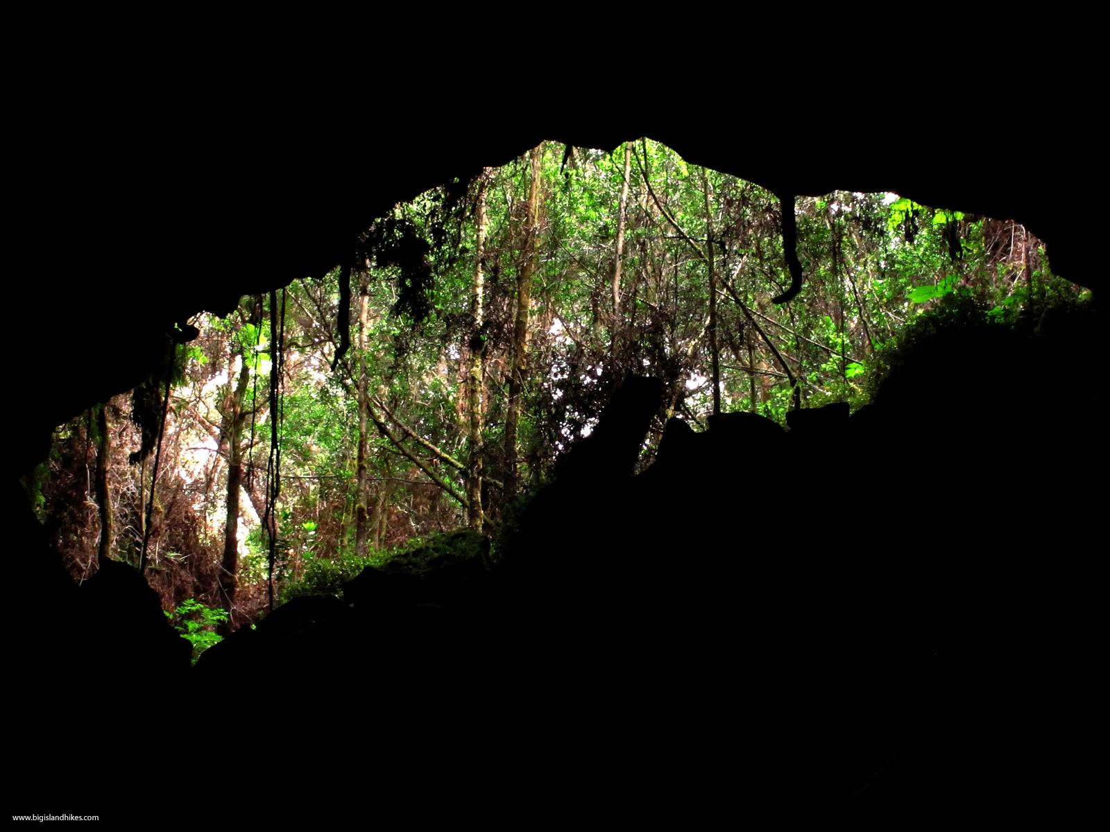 Pua Po'o Lava Tube