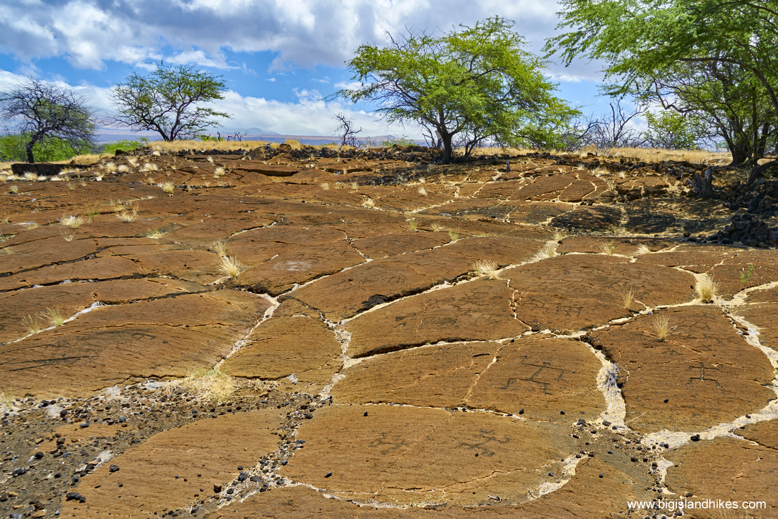 Puakō Petroglyph Archaeological District