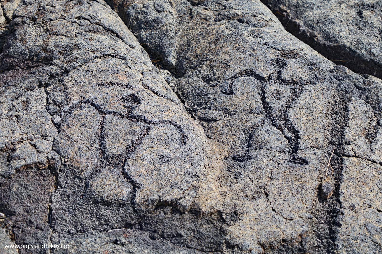 Pu'u Loa Petroglyphs
