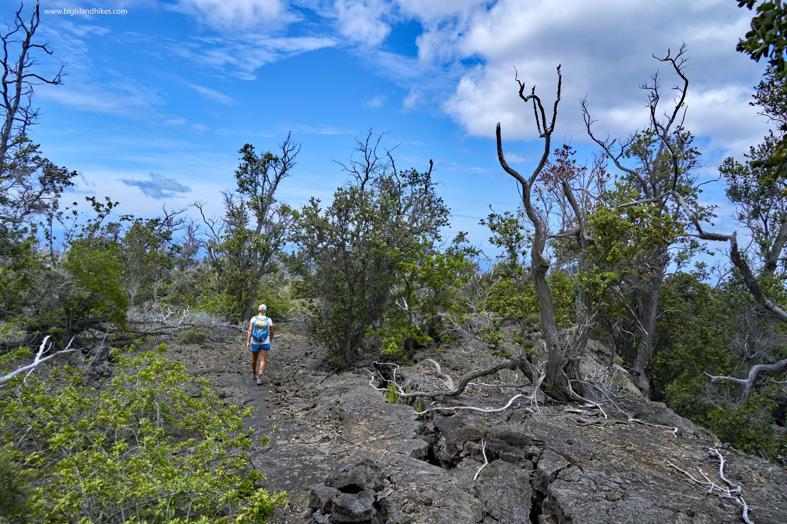 kaheawai trail hike.jpg
