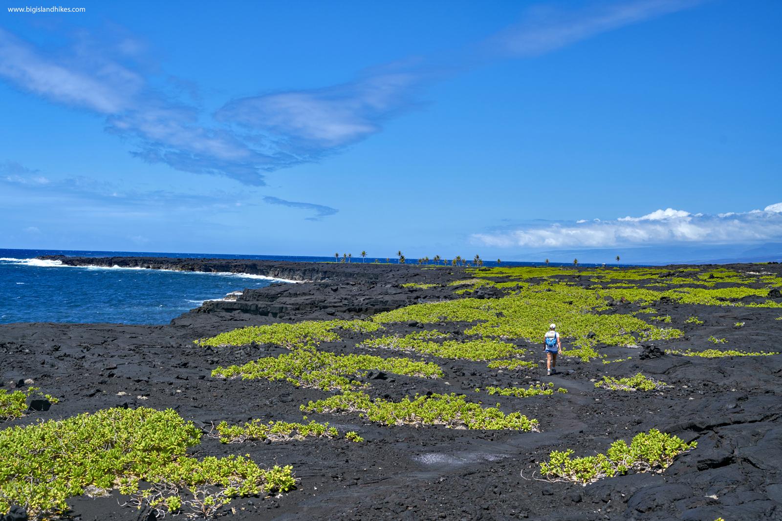 Hiking toward ʻĀpua Point