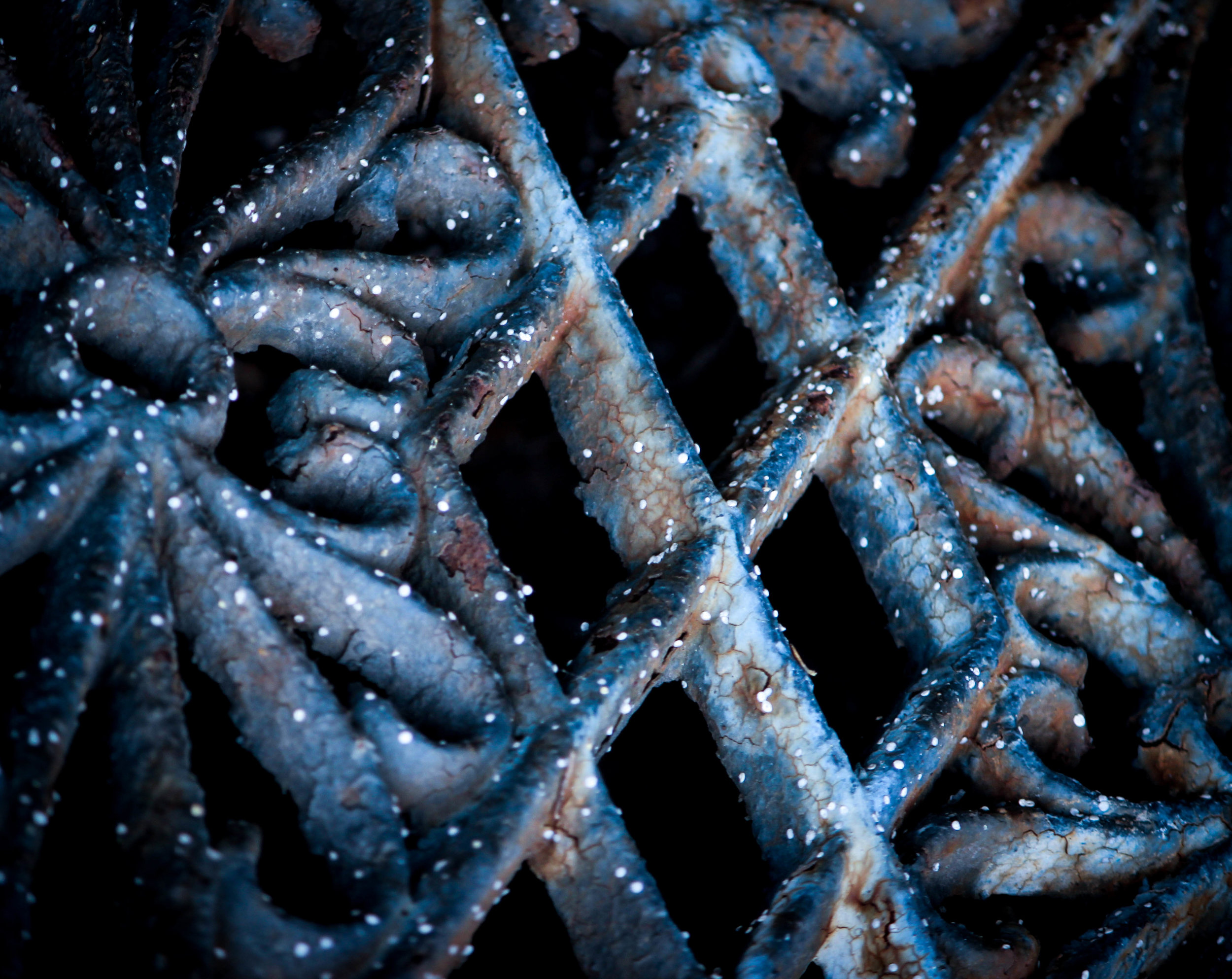 """Winter Gates"" / Photography by Aaron Speight"