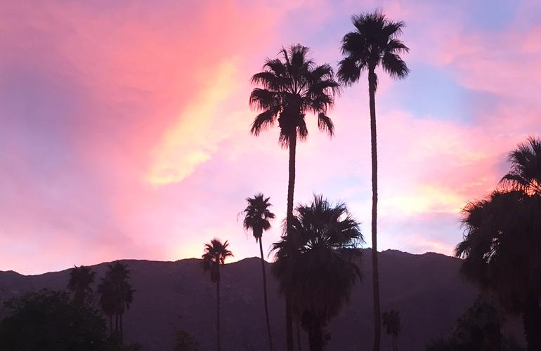 piss-sunset-feature.jpg