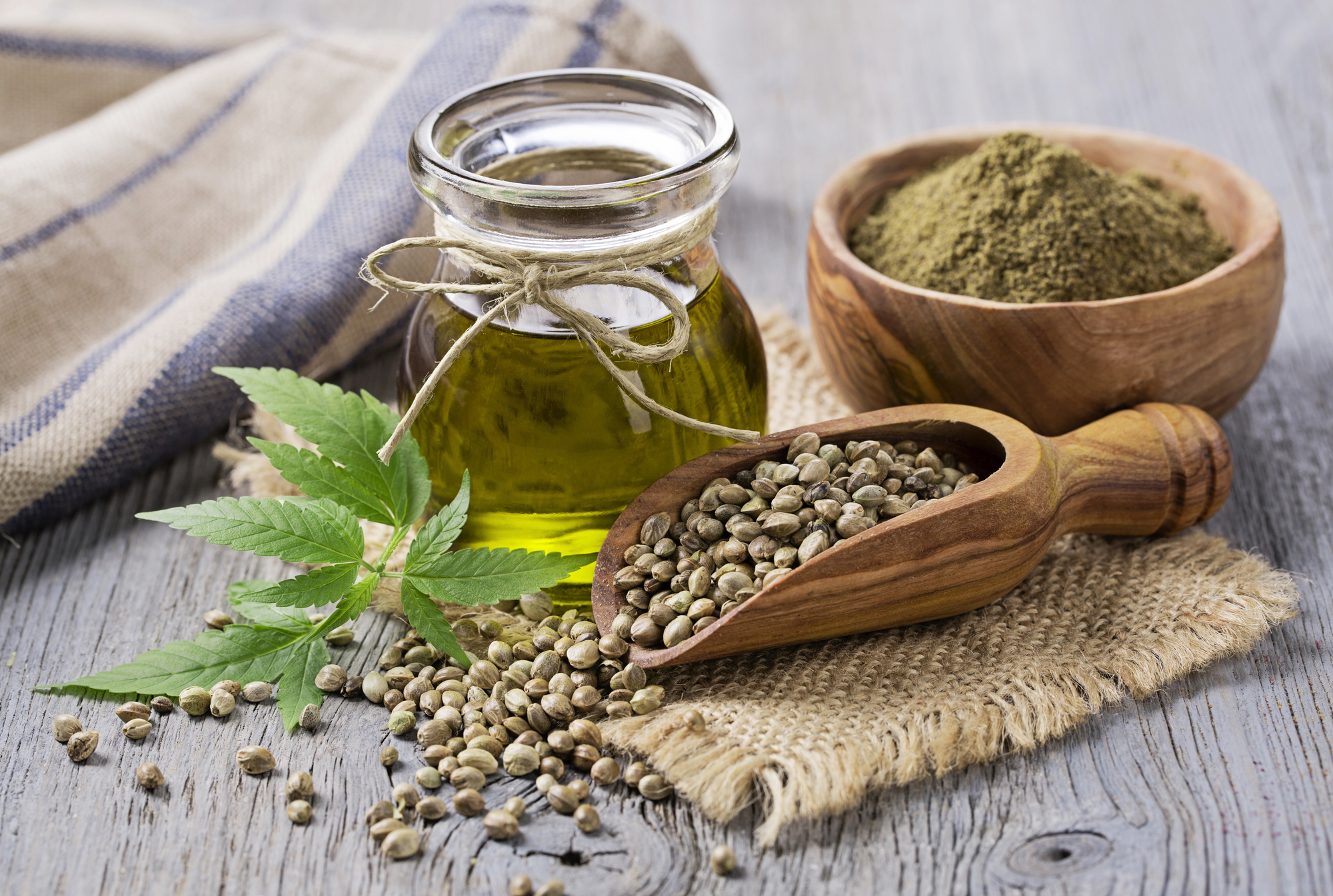 #hemp cannabis marijuana cbd thc weed oil hemp seed extract