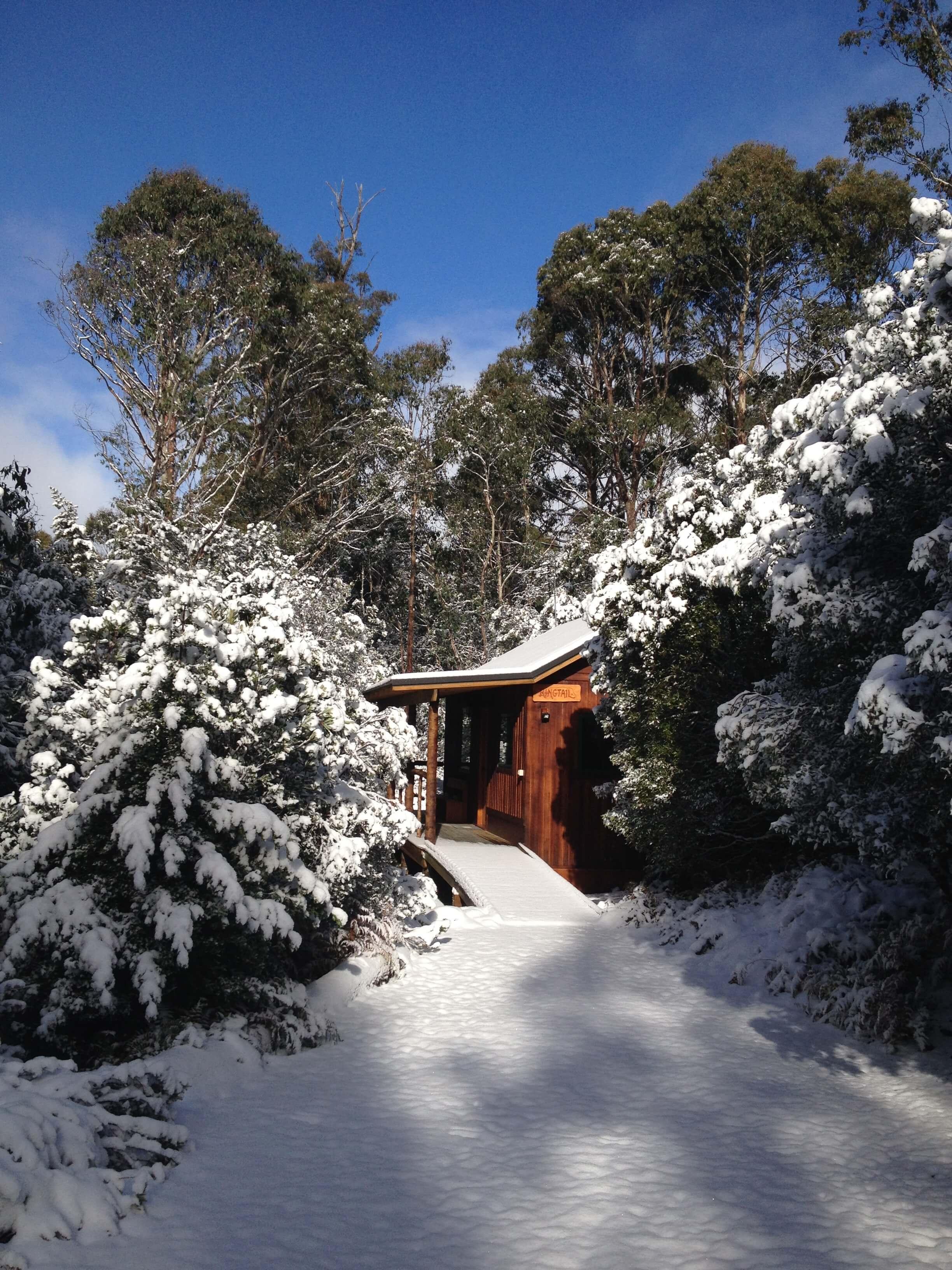 Marsupial Cottage.JPG