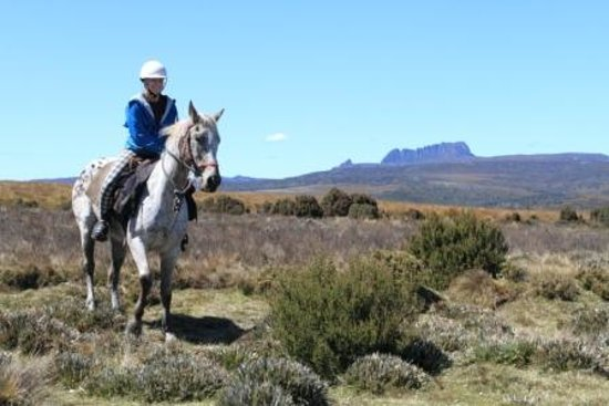 Cradle Country Adventures - Cradle Mountain Highlanders