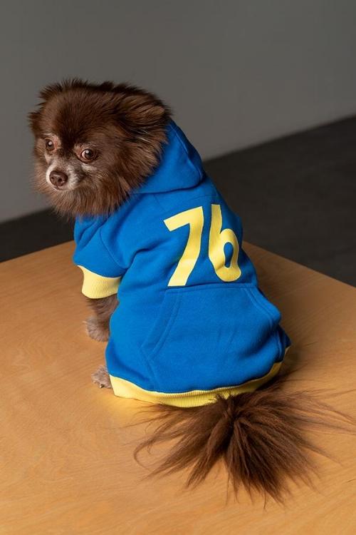 14fallout76dogsweater.jpg
