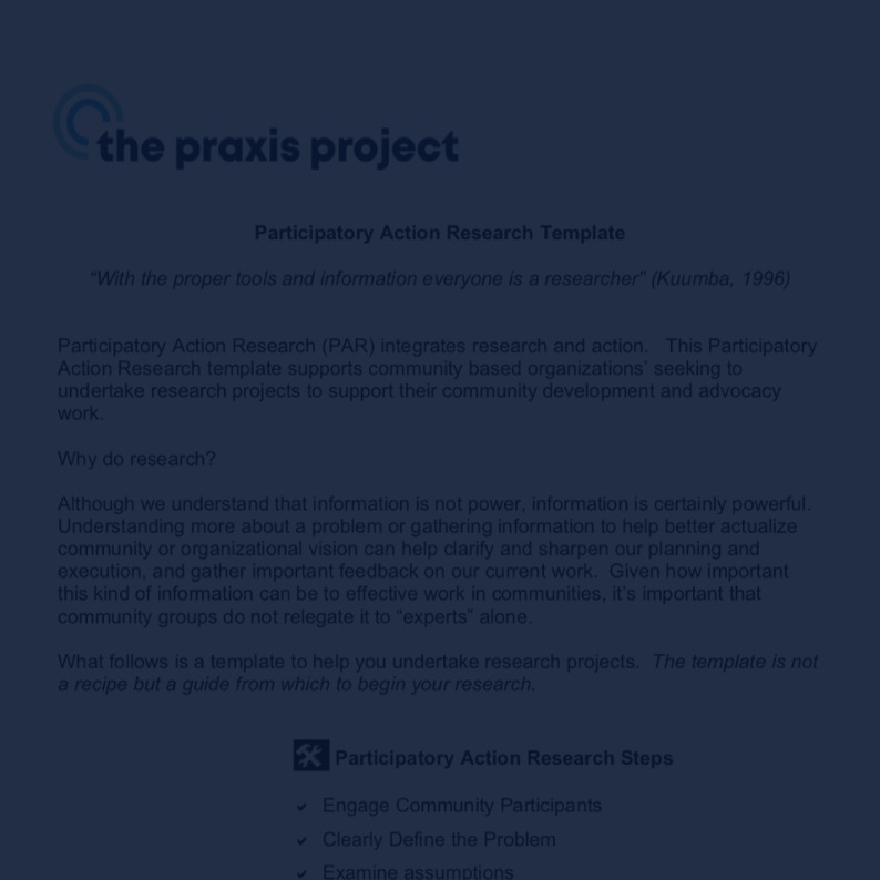 Participatory Action Research Template -