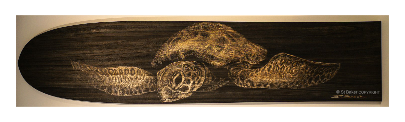 Be Free Turtle Alaia