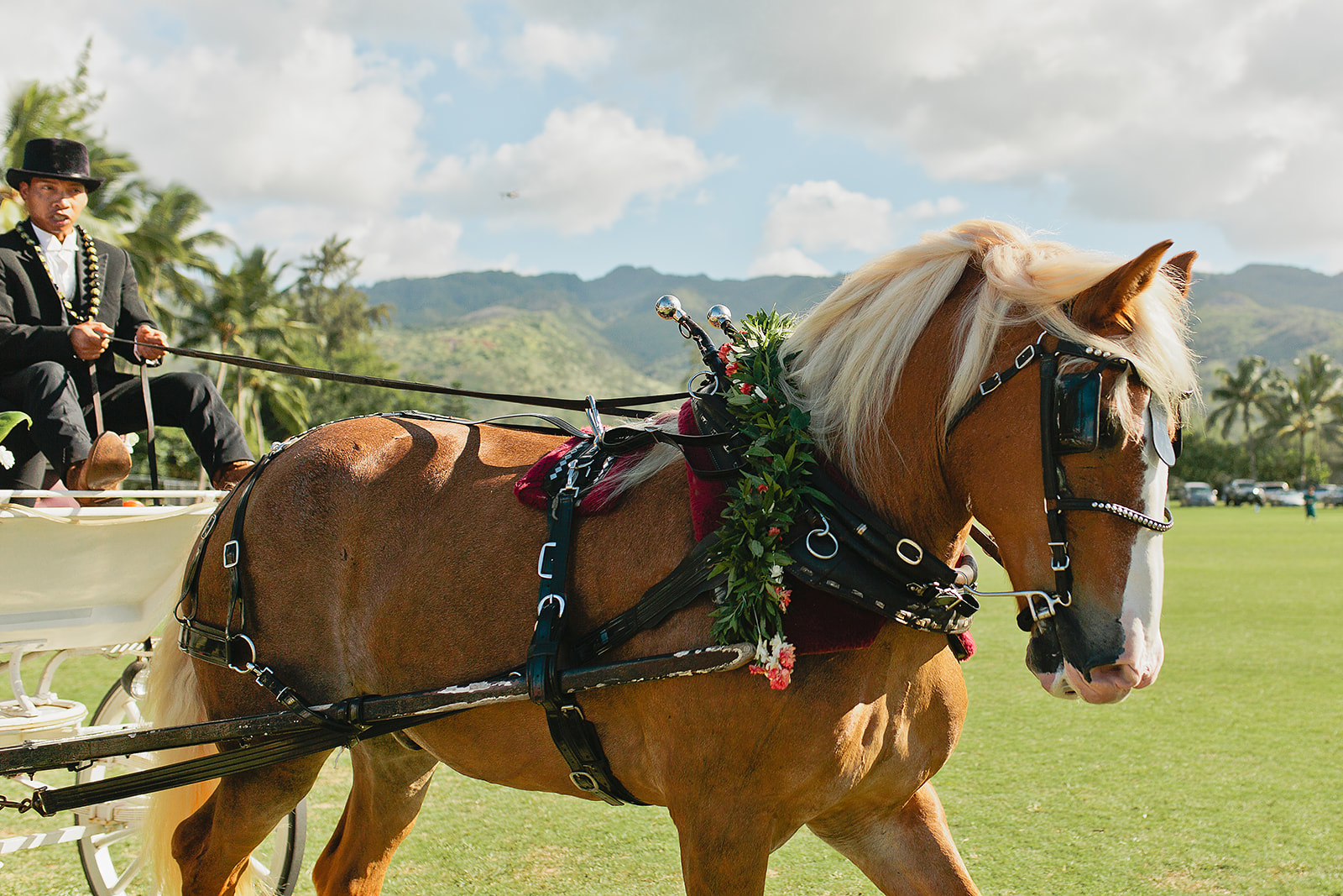 Hawaii Polo Club Wedding - CEREMONY_39.jpg