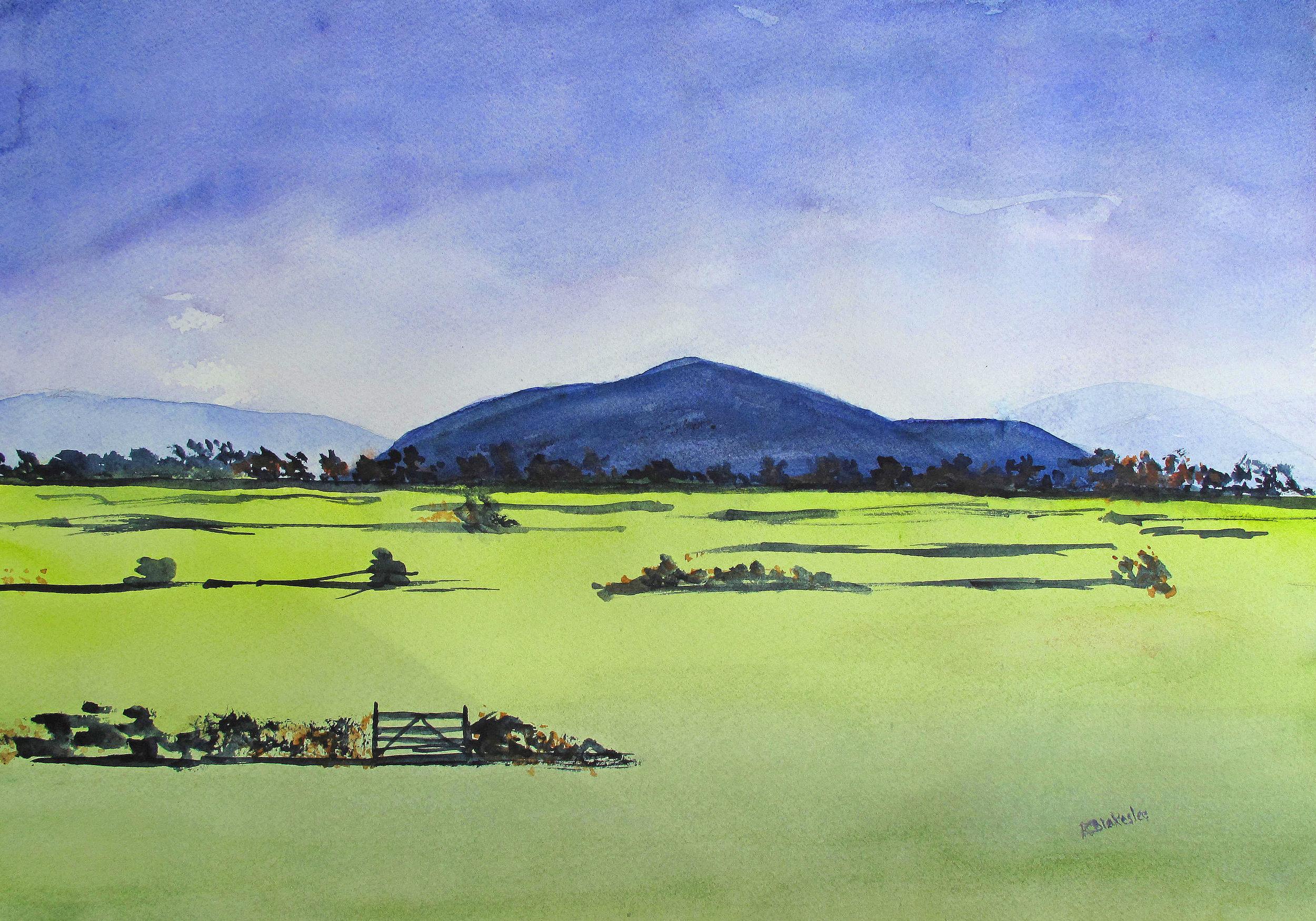 Meadow - 16 x 20 - watercolor
