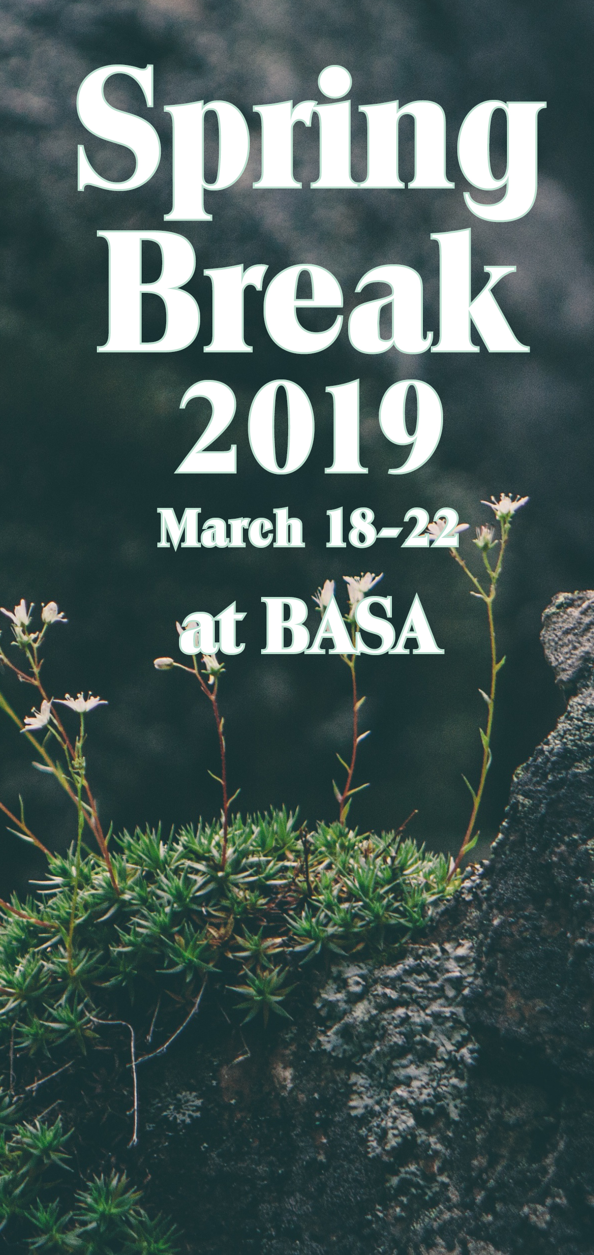 2019 Spring Brochure cover.jpg