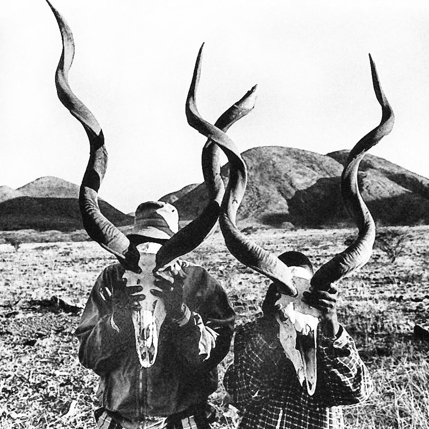 Kudu skulls with horns. Namibia, 2008