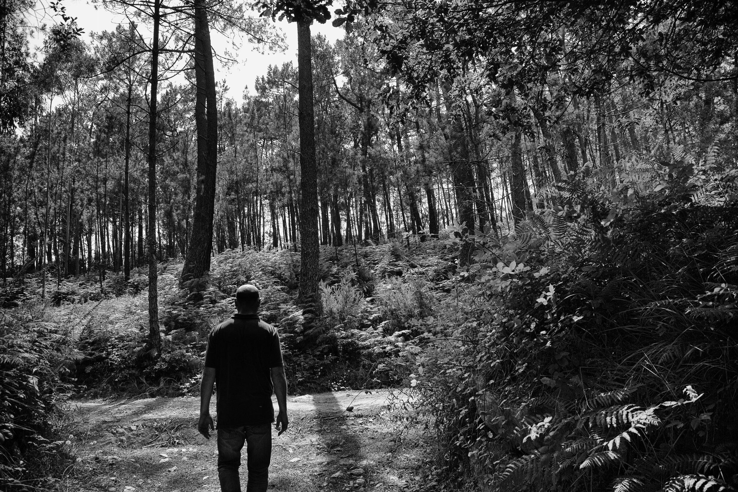 ALD20130721-CORCO-FA156-bosque.jpg