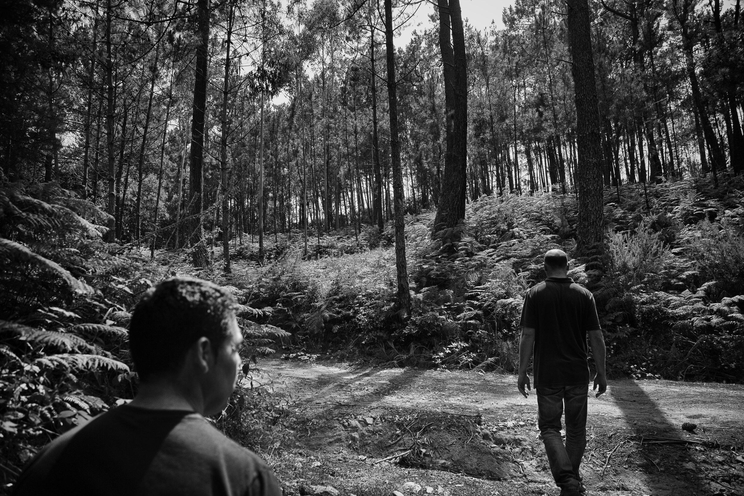 ALD20130721-CORCO-FC158-bosque.jpg