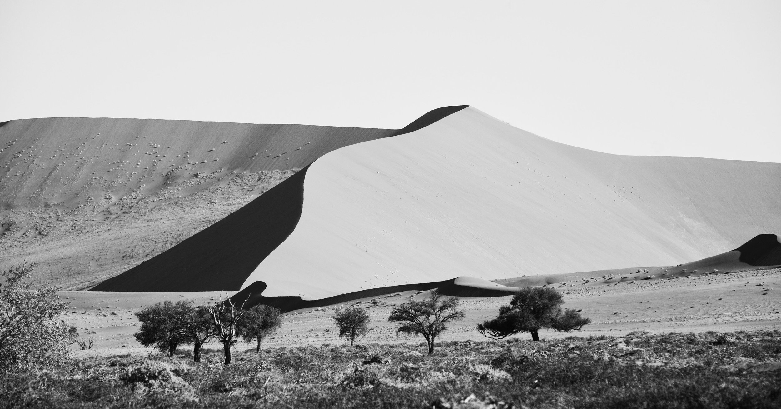 _MG_5685-dune#5-namibia-1,91x1.jpg