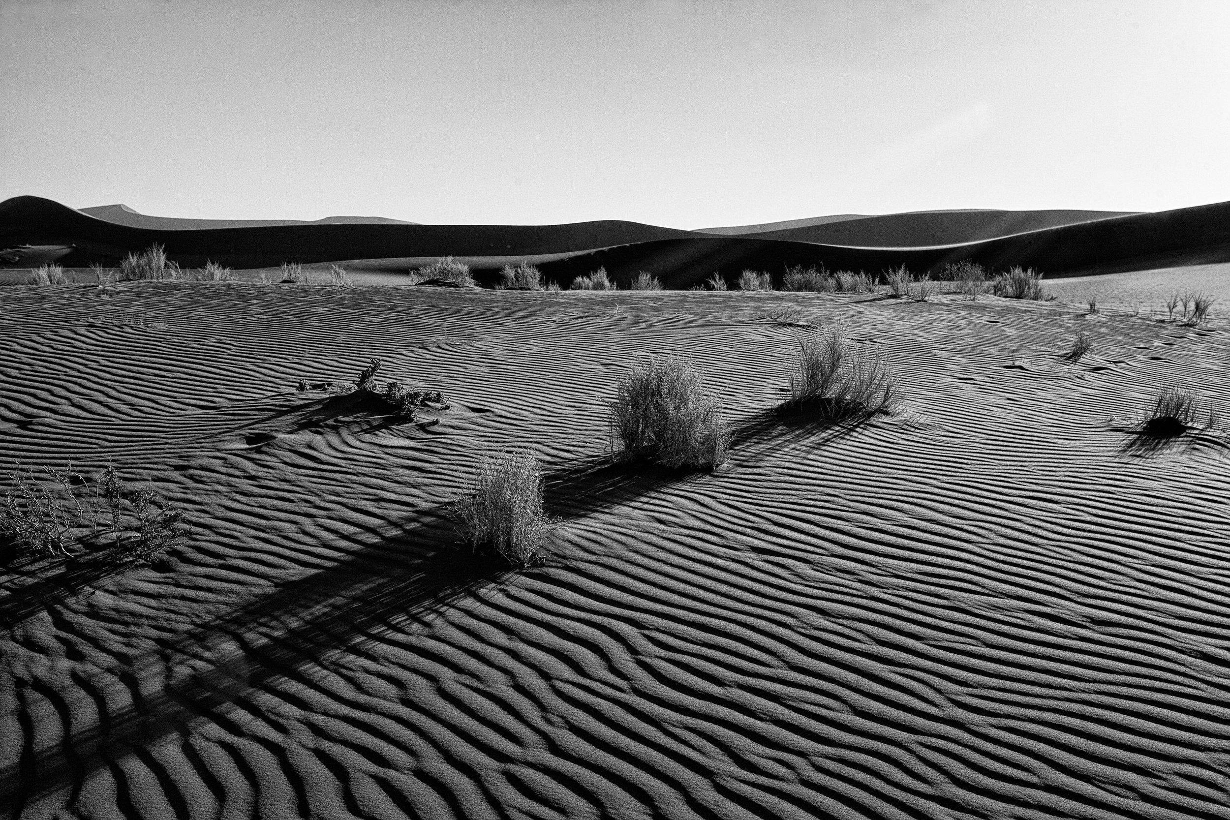 _MG_5751.CR2namibia2008-dunas-ig.jpg