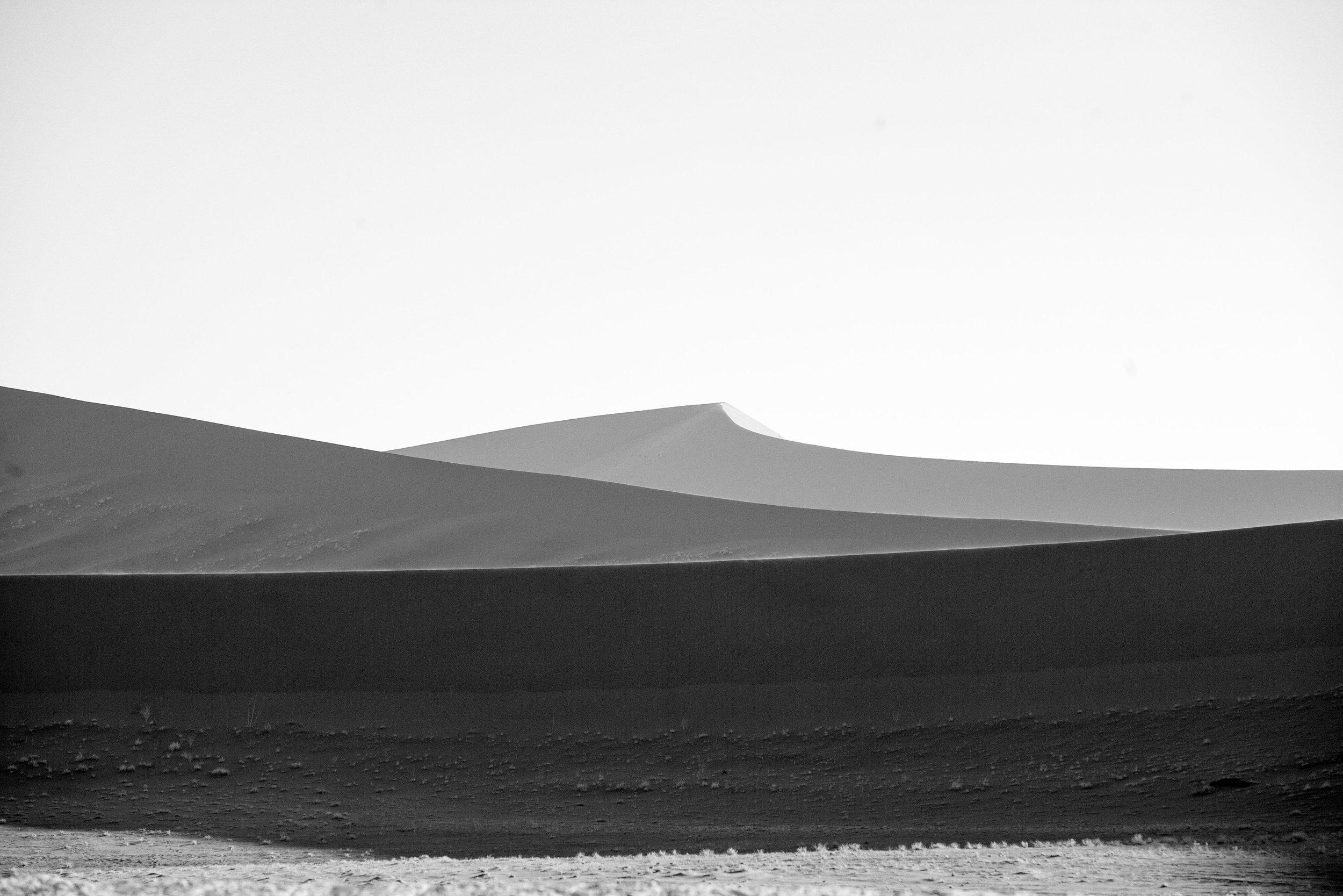_MG_5710-dune-ig.jpg