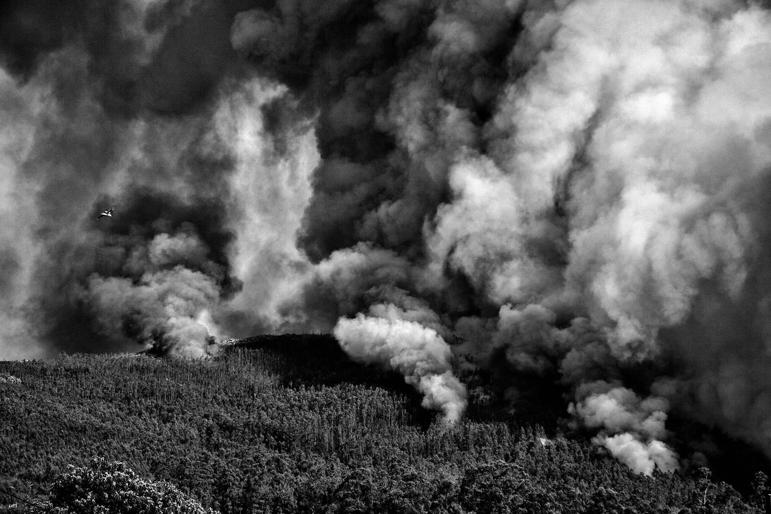 _MG_6767-incendios.jpg