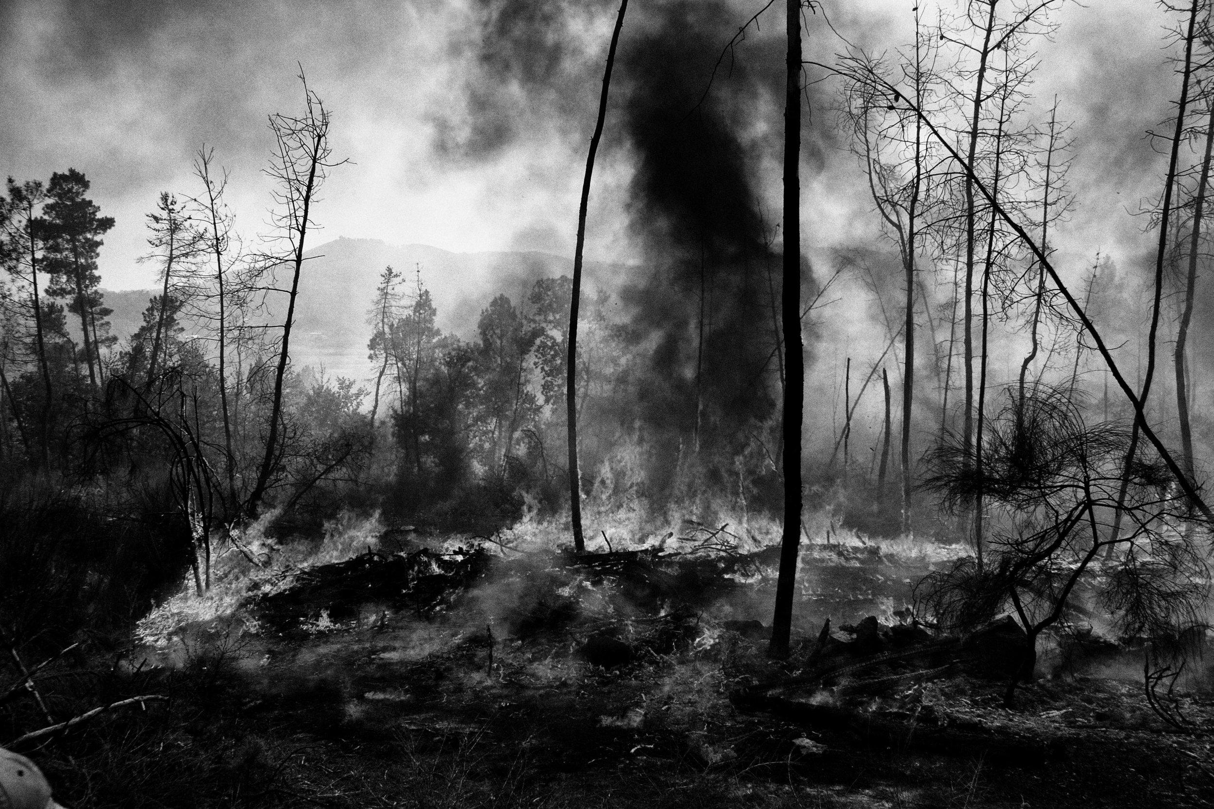 _MG_6375-incendio.jpg
