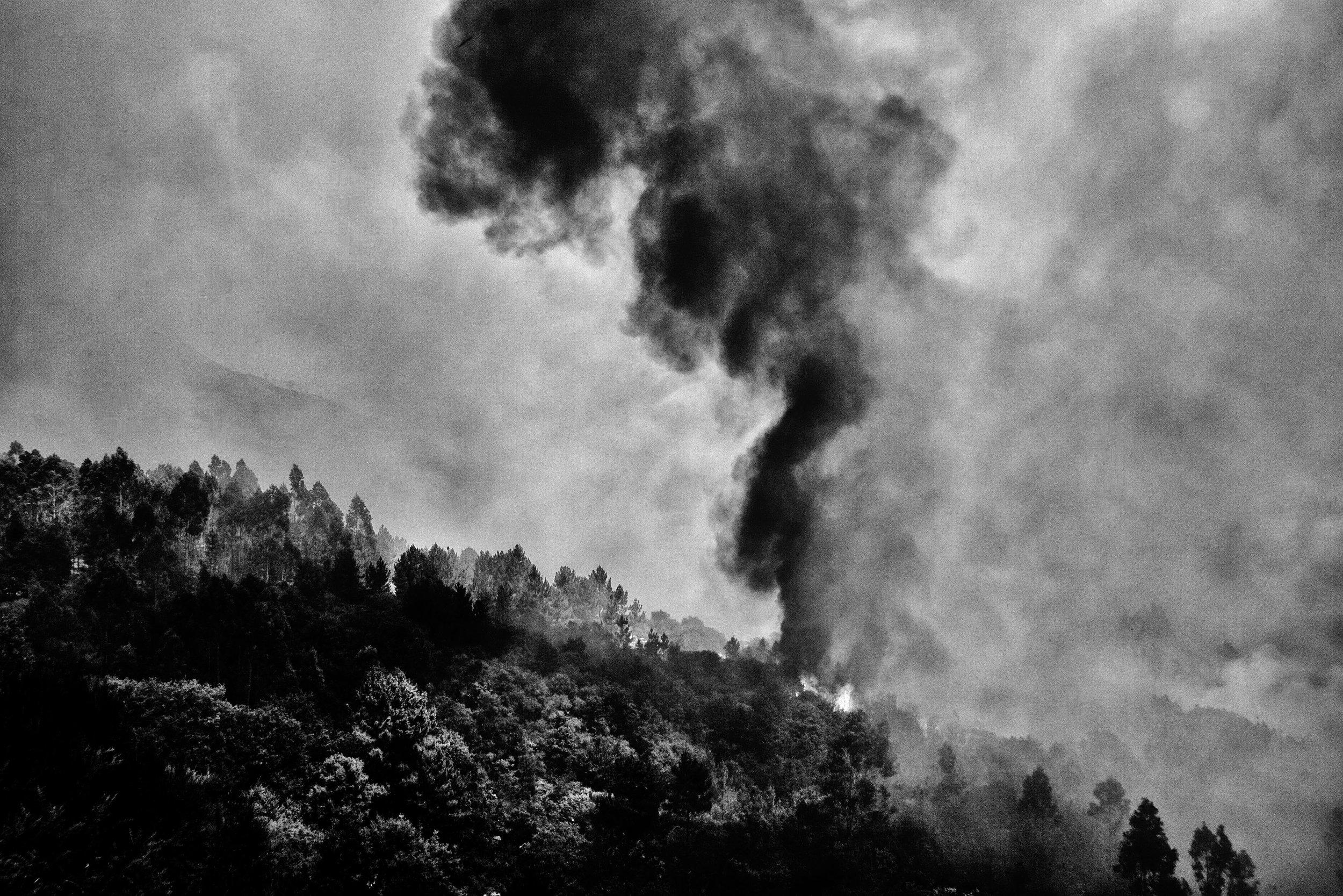 _MG_5962-incendio.jpg