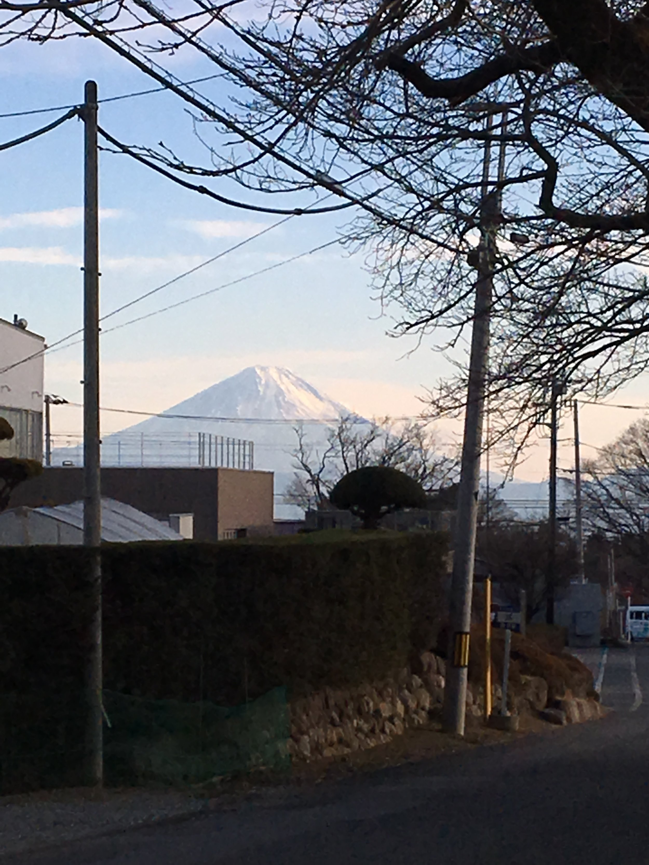 KIYOHARU ART COLONY HONO UEHARA  30.JPG