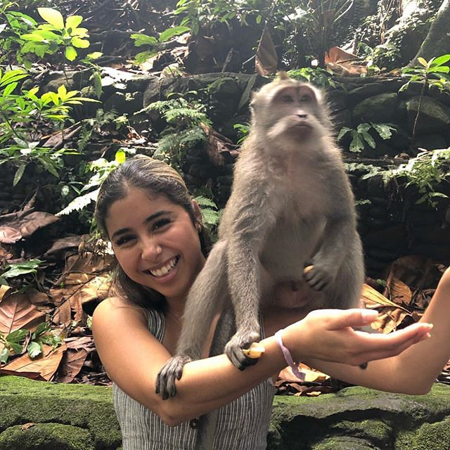 Featured is Angie, an Internal Operations member in Ubud, a center town of Bali. She is at the Sacred Monkey Forest Sanctuary, where they care for and let monkeys roam freely. One of the guides gave her a piece of fruit to feed the monkey but, he decided to jump on her and help himself. How have you enjoyed your Spring Break?