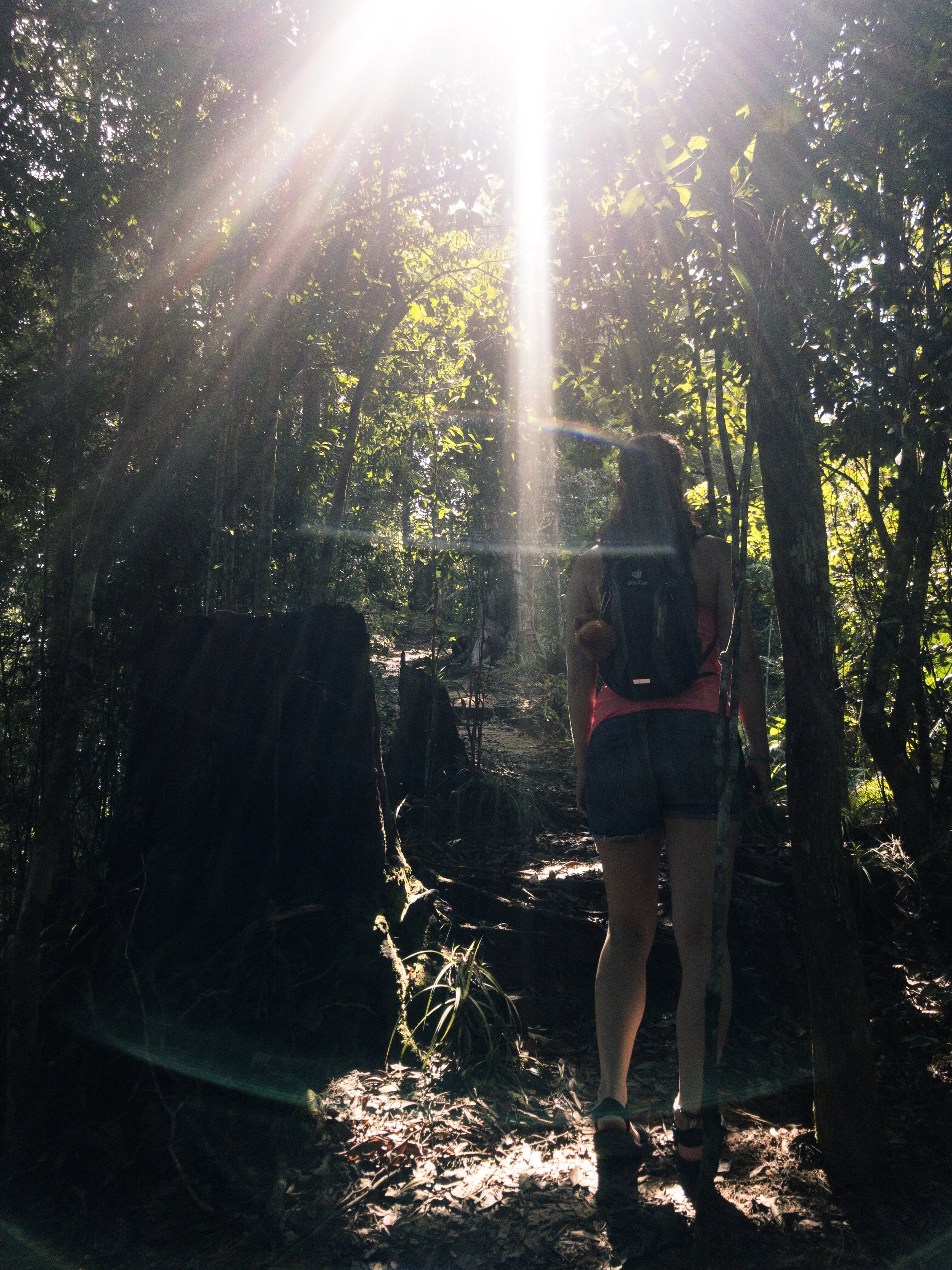 M'n ziel aan het zoeken in de jungle. Het licht al wel gevonden!
