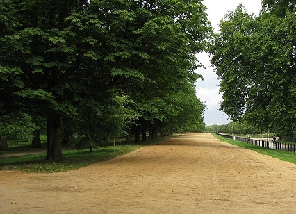 Today:Rotten Row, Hyde Park - Horse riding continues but not with quite the same intensity