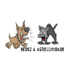 Centro Veterinario de Sintra_reduz agressividade.jpg
