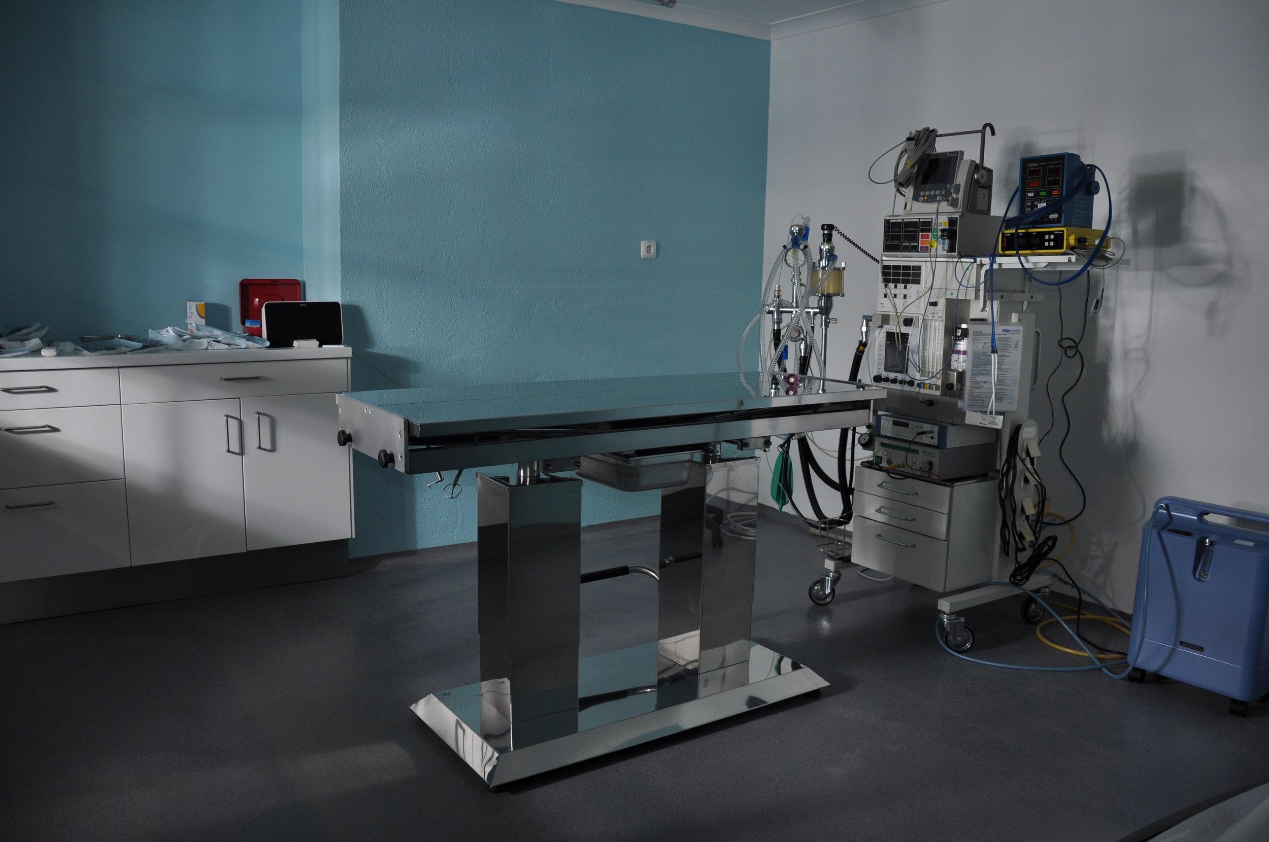 veterinariosintra_cirurgia1.JPG