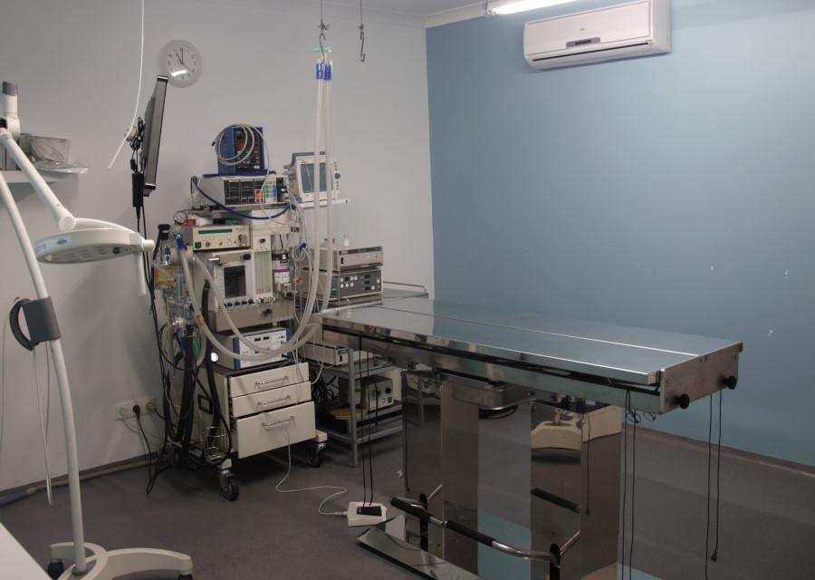 veterinariosintra_cirurgia2.JPG
