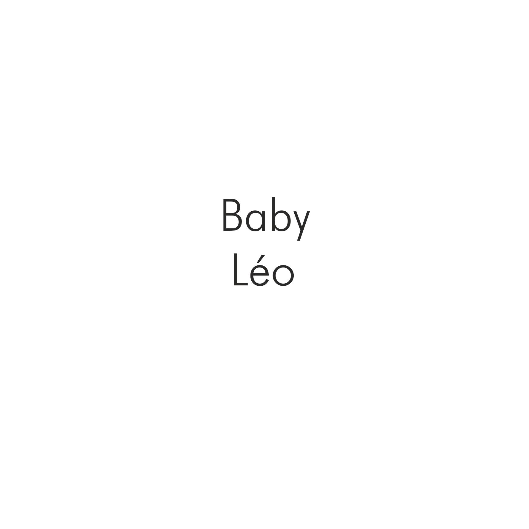 Baby Leo.png