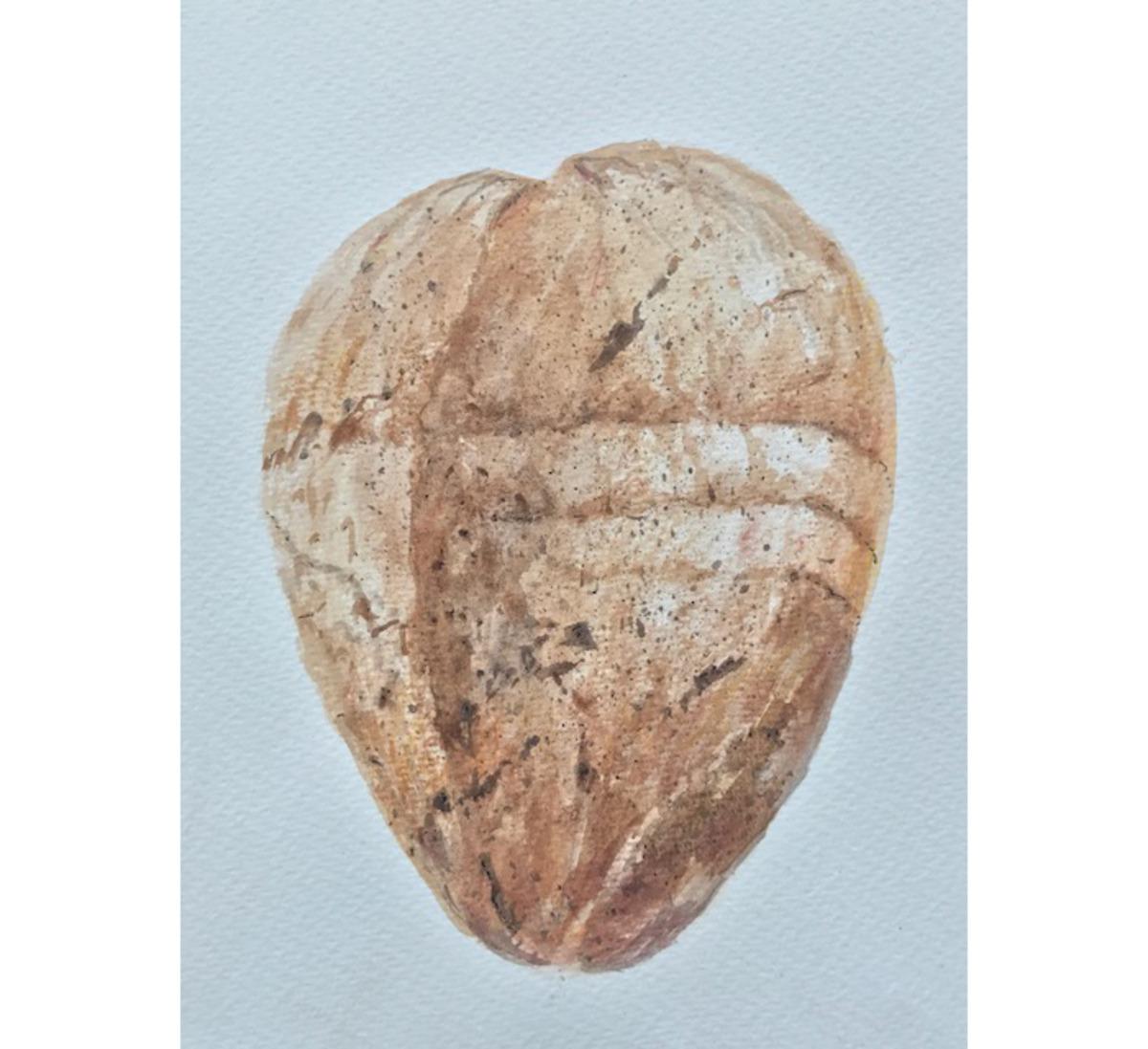 Coconut 3 , Sri Lanka