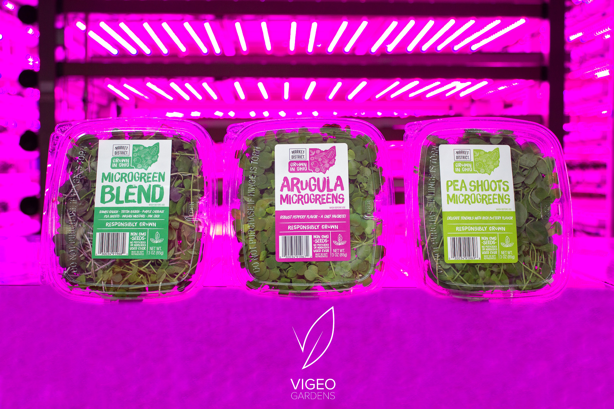 CLICK THE PHOTO TO BUY YOUR MICROGREENS TODAY!