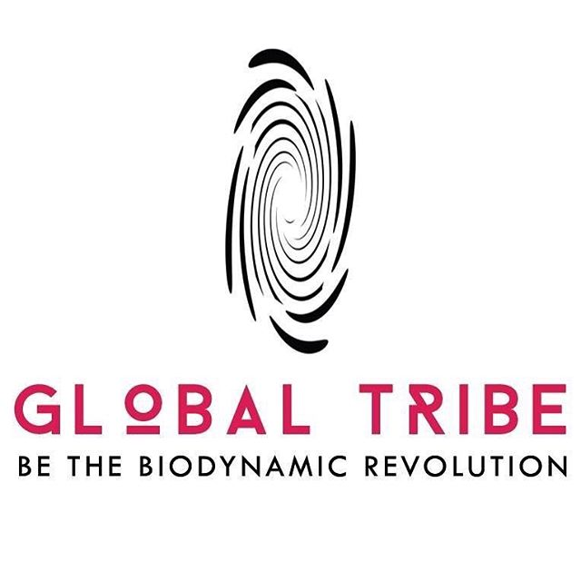 We're honoured to contribute to the biodynamic revolution of Global Tribe Biodynamic @globaltribe_bio by giving them a complete rebranding, 100% social media support, and a brand new website. Got a great idea to change the world? Let us help get your message out to everyone! 🌴😊 . #rebranding #socialmedia