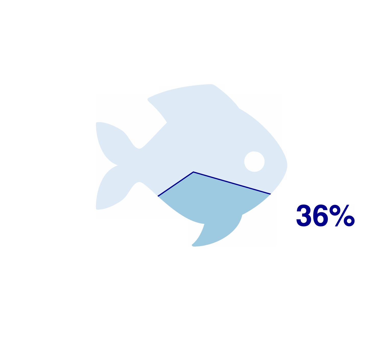 European_plaicefishHigh.png