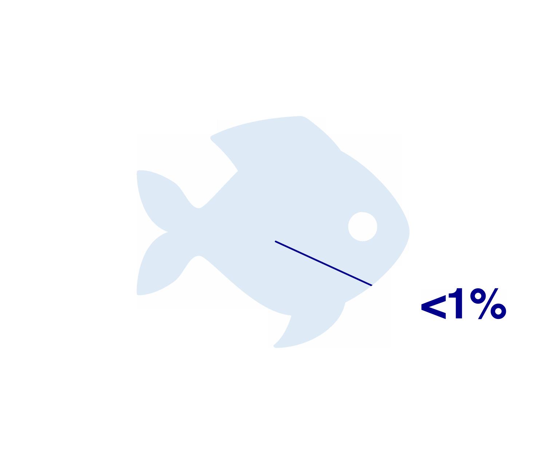 Striped_catfishfishLow.png