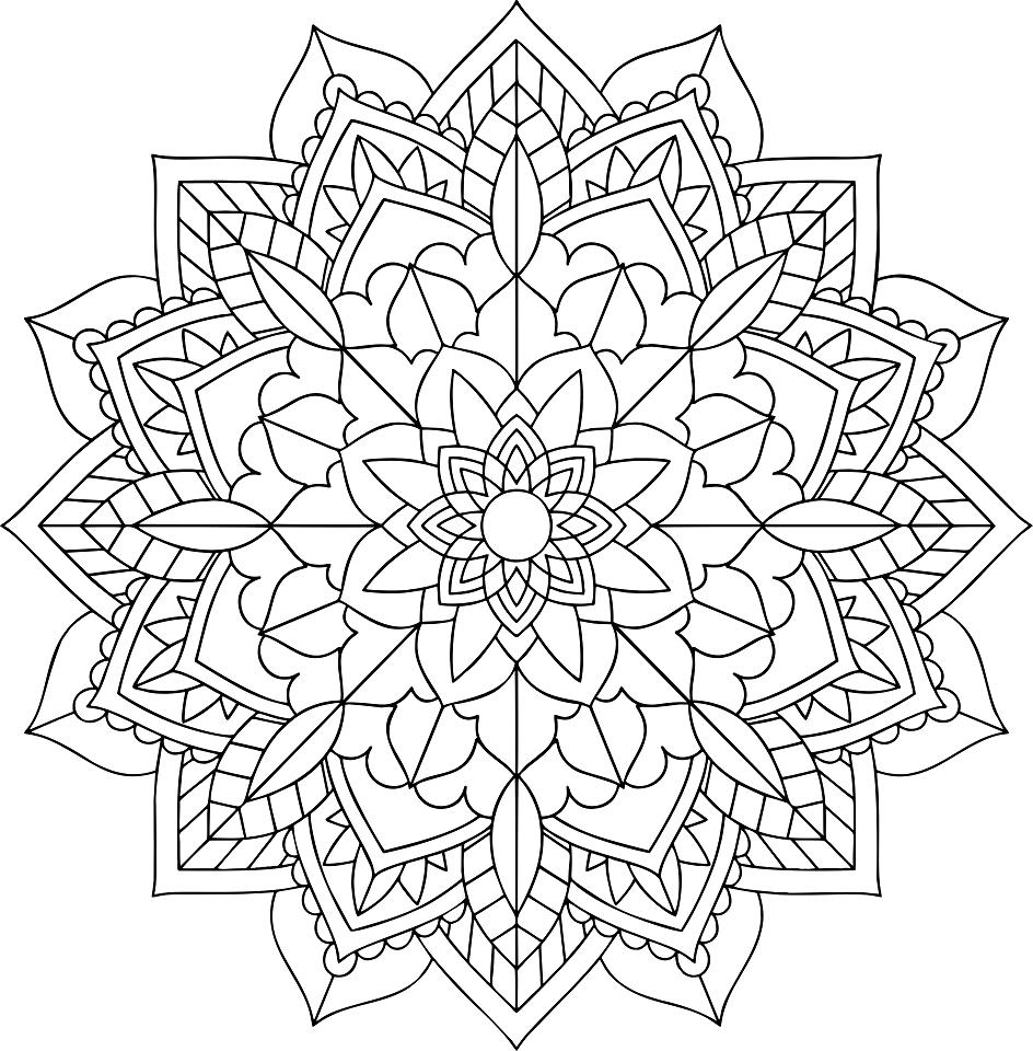 floral-2746540.png