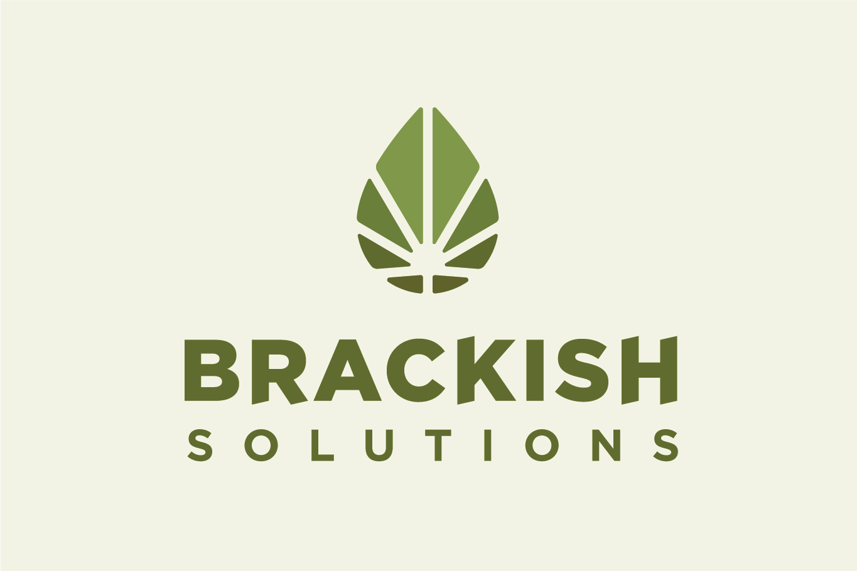 Brackish logo 3b2.png