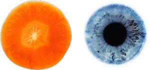 carrot-eye.jpg
