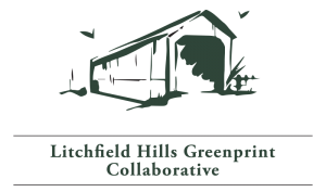 lh-greenprint-logo.png