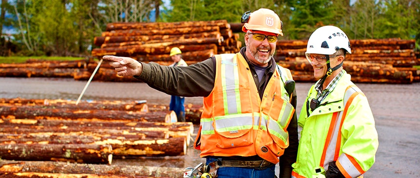 safety-mosaic-forest-management.jpg