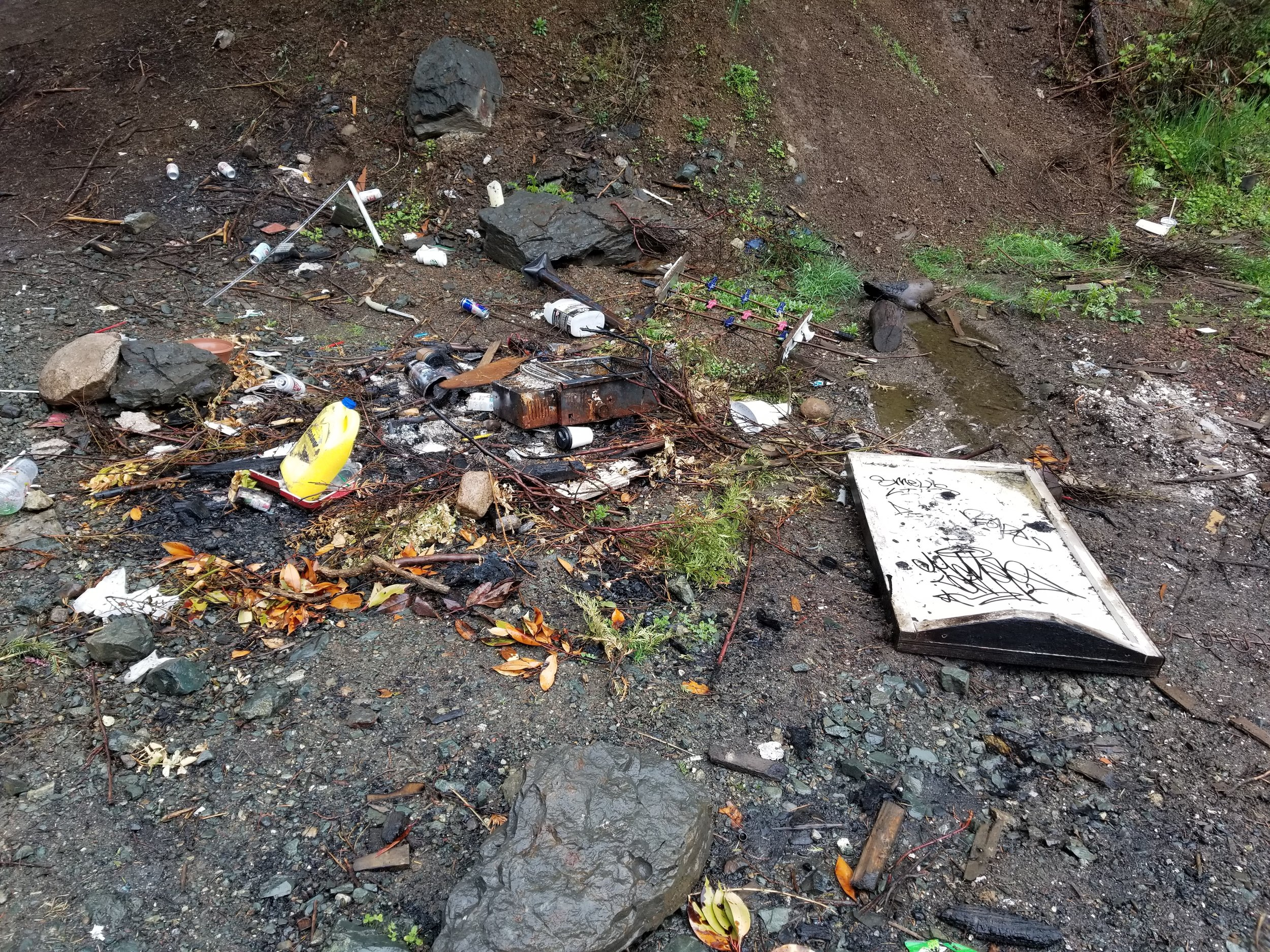 cowichan bay trash cleanup 1.jpg