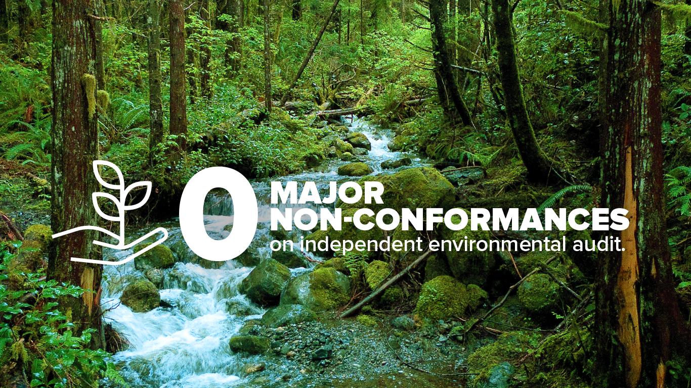 EnvironmentalAudit_v2.jpg