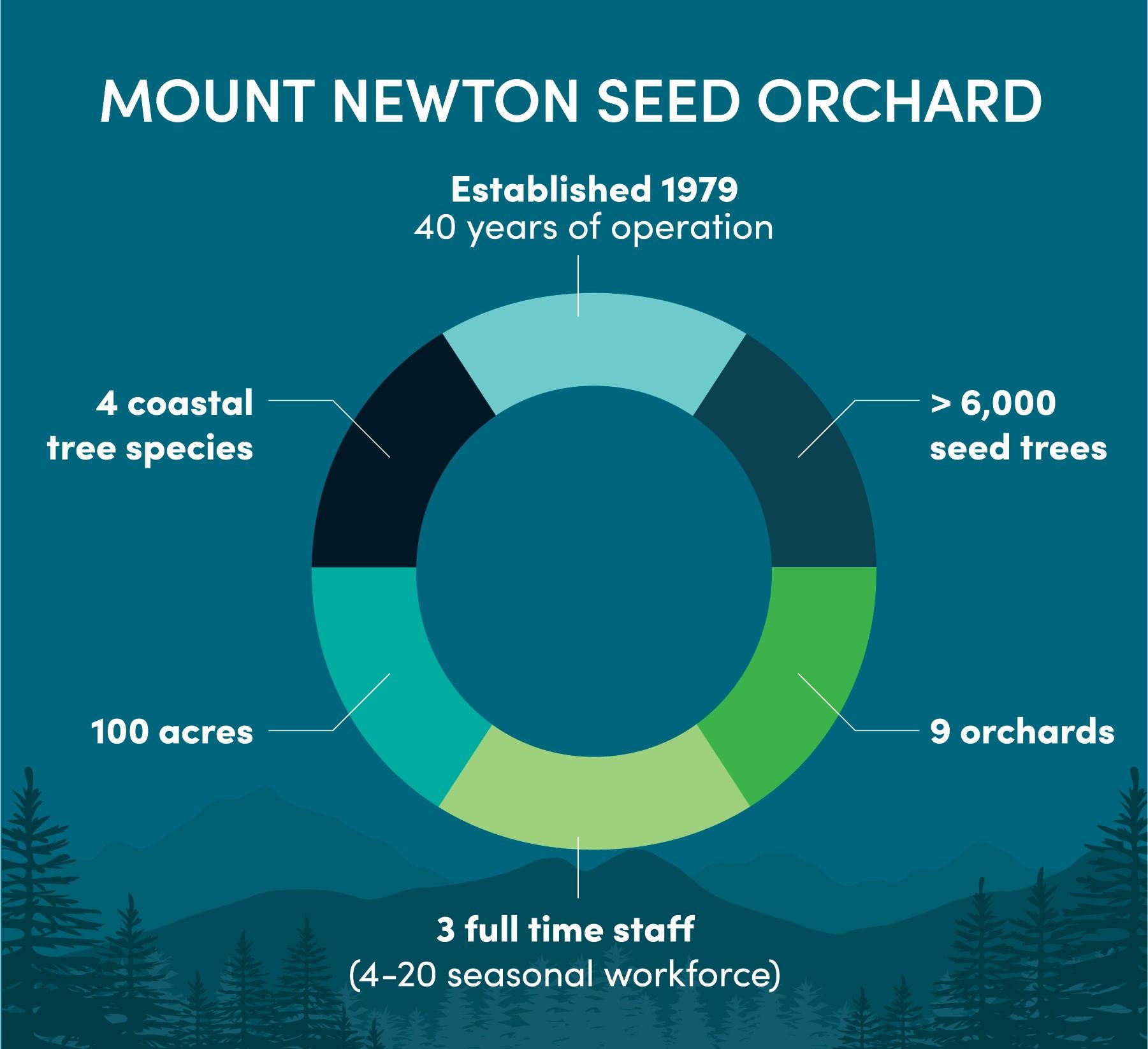 Mt Newton Infographic 1.jpg