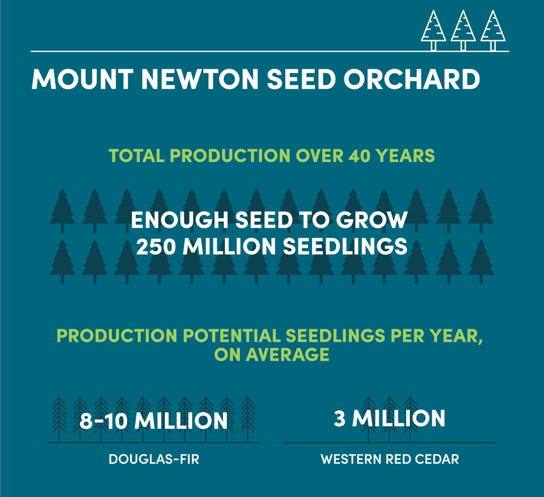 Mt Newton Infographic 2.jpg