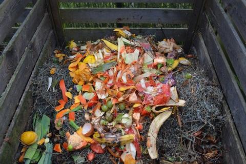 Pile of Food Scraps