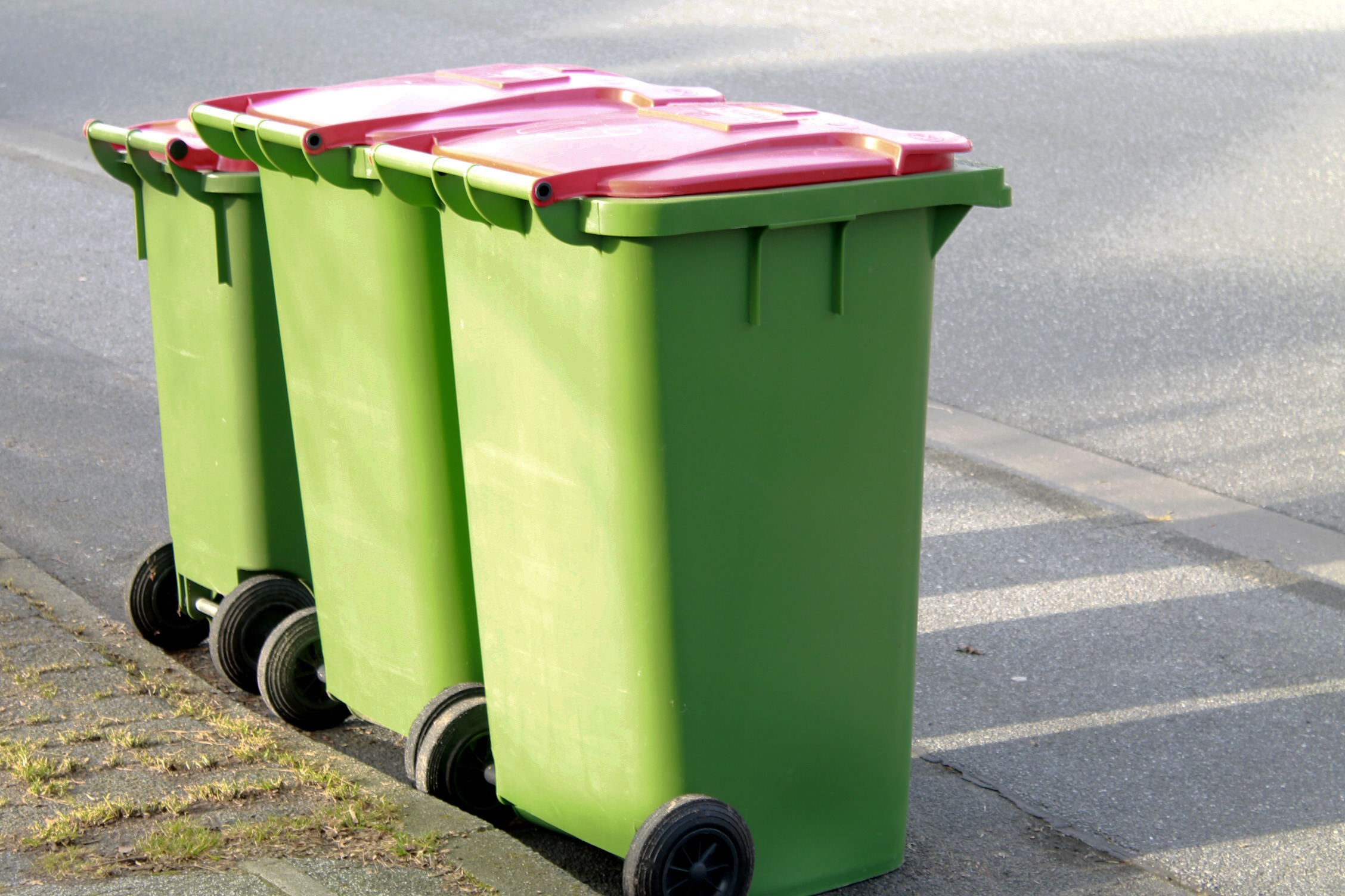 3 Green Bins with Pink Lids Lined Up on a Curb